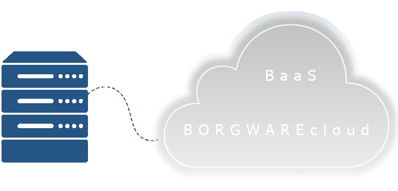 Backup as a Service (BaaS) von BORGWARE